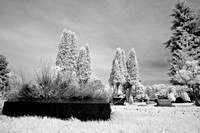 infrared-2008_060