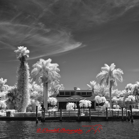 florida-2012-infrared-images_28